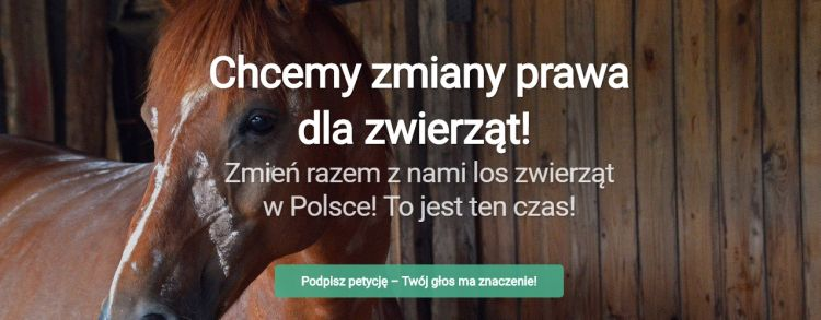 petycjablog